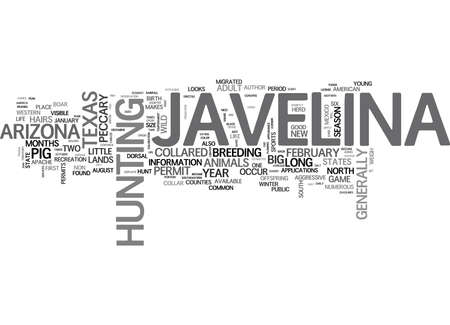 JAVELINA LITTLE PIGS WITH A BIG FIGHT Text Background Word Cloud Concept