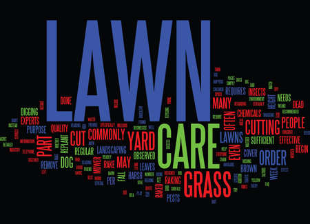 LAWN CARE FAQ Text Background Word Cloud Concept Ilustracja