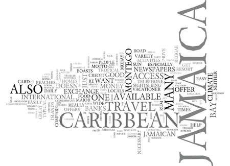 IT テキスト背景単語雲概念の楽しみのためだけジャマイカ  イラスト・ベクター素材