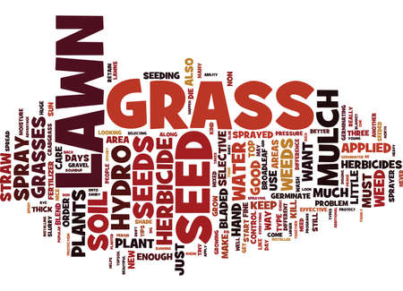 LAWN CARE TIPS Text Background Word Cloud Concept Banco de Imagens - 82591788