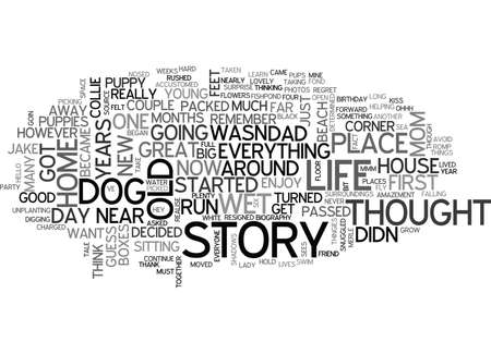 JAKE S OWN STORY Text Background Word Cloud Concept Illustration