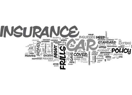IS NO FRILLS CAR INSURANCE WORTH THE RISK Text Background Word Cloud Concept