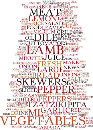 GRILLED LAMB SHASHLIKI Text Background Word Cloud Concept
