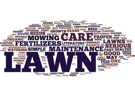 LAWN CARE MAINTENANCE FOR MERE MORTALS Text Background Word Cloud Concept