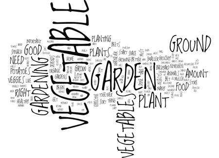 GREAT TIPS ON HOW TO SET UP A VEGETABLE GARDEN Text Background Word Cloud Concept
