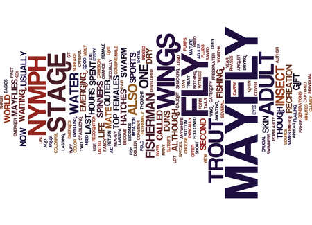 THE MAYFLY ADULT Text Background Word Cloud Concept