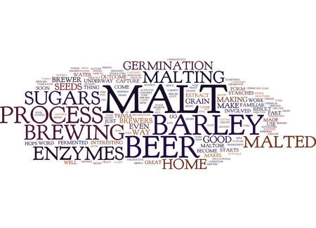 THE MALT OF BEER Text Background Word Cloud Concept Ilustração