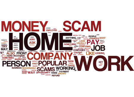 THE NUMBER ONE WORK AT HOME SCAM EXPLAINED Text Background Word Cloud Concept Illustration