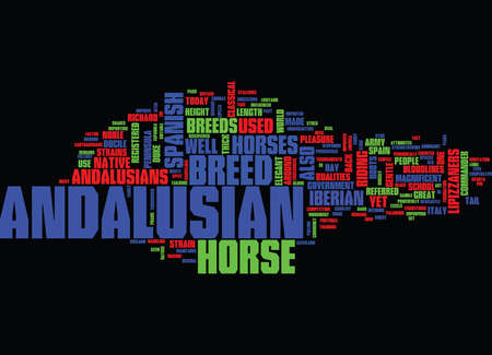THE MAGNIFICENT ANDALUSIAN Text Background Word Cloud Concept