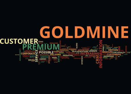 THE NEW GOLDMINE PREMIUM Text Background Word Cloud Concept