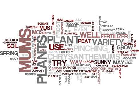 THE PERFECT MUM Text Background Word Cloud Concept