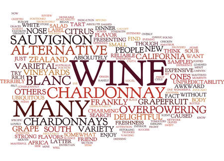 THE JOYS OF SAUVIGNON BLANC Text Background Word Cloud Concept Illustration