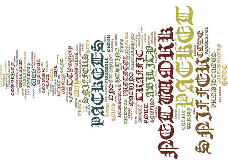 THE EVIL PACKET SNIFFER Text Background Word Cloud Concept Illustration