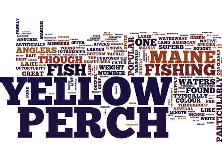YELLOW PERCH Text Background Word Cloud Concept