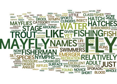 THE MAYFLY NYPMH Text Background Word Cloud Concept Иллюстрация