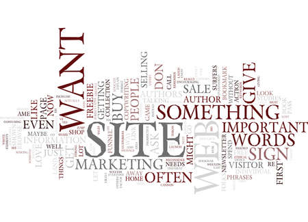 THE MOST IMPORTANT WORDS ON YOUR WEB SITE Text Background Word Cloud Concept