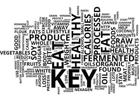 THE KEYS TO HEALTHY WEIGHT LOSS AND WELLNESS Text Background Word Cloud Concept Illustration