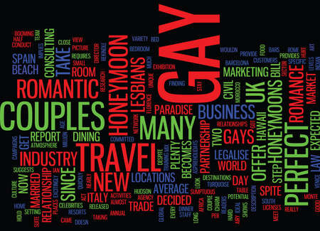 THE PERFECT GAY HONEYMOON Text Background Word Cloud Concept