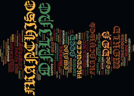 THE ONLINE FRANCHISE EXPERIENCE Text Background Word Cloud Concept