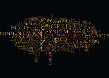 THE ESSENTIAL GLYCONUTRIENTS THAT SHOULD BE IN YOUR DIET Text Background Word Cloud Concept