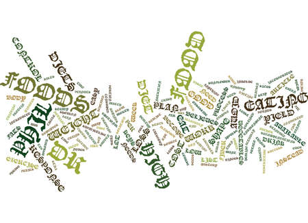 intentional: THE DR PHIL DIET EXPLAINED Text Background Word Cloud Concept Illustration