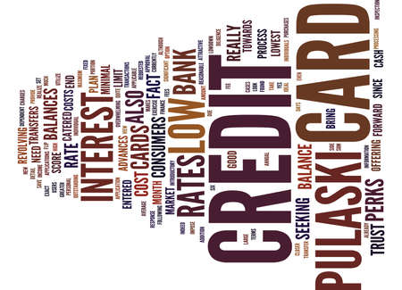 THE LOWDOWN ON THE PULASKI CREDIT CARD Text Background Word Cloud Concept