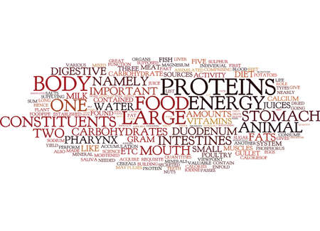 THE IMPORTANT ROLE OF YOGA IN DIGESTIVE SYSTEM Text Background Word Cloud Concept