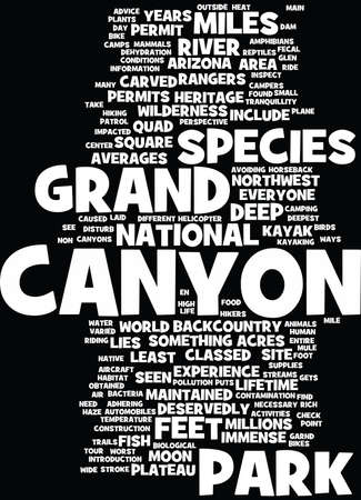 impacted: GRAND CANYON TOUR PUTS A DIFFERENT PERSPECTIVE ON LIFE Text Background Word Cloud Concept