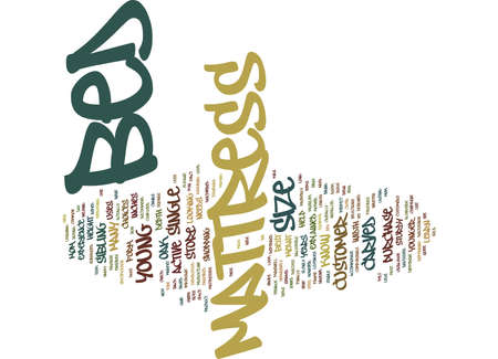 BED RUGS AND BEYOND Text Background word cloud concept
