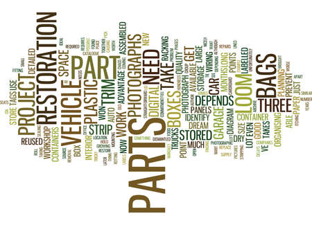 BEFORE YOU PLAN YOUR PARTY Text Background Word Cloud Concept Иллюстрация