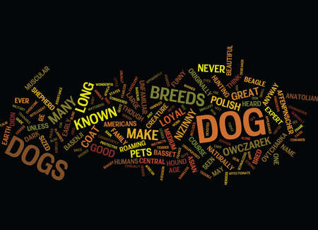 basset: LESSER KNOWN DOG BREEDS Text Background Word Cloud Concept Illustration
