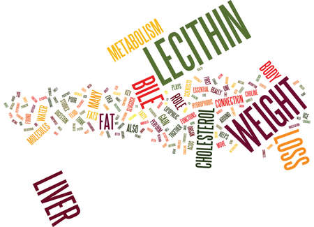 LECITHIN AND WEIGHT LOSS Text Background Word Cloud Concept