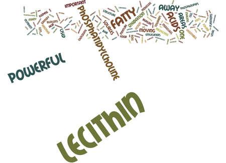 レシチンは、強力なテキスト背景単語雲概念  イラスト・ベクター素材
