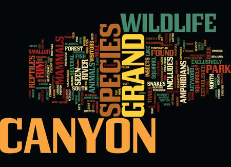 GRAND CANYON WILDLIFE Text Background Word Cloud Concept