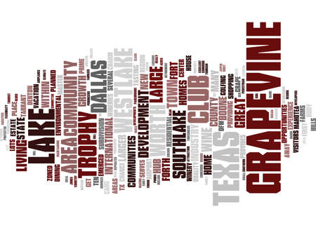 GRAPE VINE LAKE TEXAS Text Background Word Cloud Concept Illustration