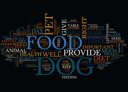 came: YOUR DOG WILL THANK YOU IF YOU READ THESE DOGGIE DIET TIPS Text Background Word Cloud Concept Illustration