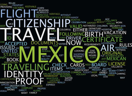 LEGAL AIR TRAVEL TO MEXICO FLY NOW OR SUFFER LATER Text Background Word Cloud Concept