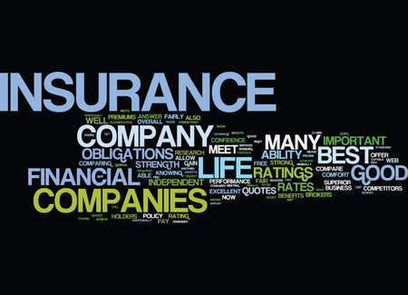 fairly: LIFE INSURANCE QUOTES FOR THE CONSUMER Text Background Word Cloud Concept Illustration