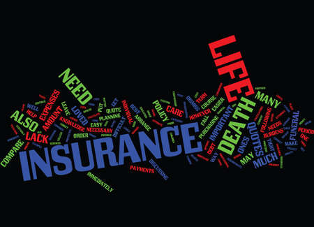 LIFE INSURANCE QUOTE HOW MUCH TO SPEND HOW MUCH TO GET Text Background Word Cloud Concept