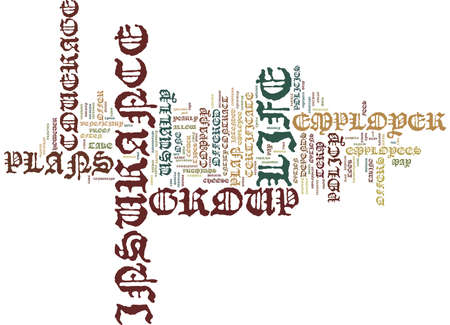LIFE INSURANCE PLANS Text Background Word Cloud Concept
