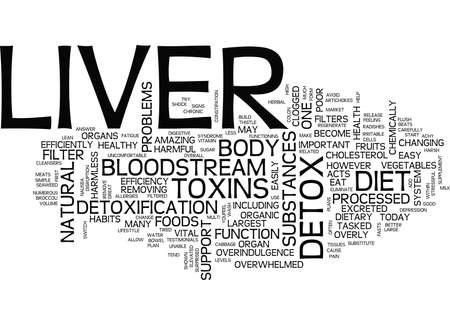 LEVER DETOX DIEET Tekst Achtergrond Word Cloud Concept Stock Illustratie