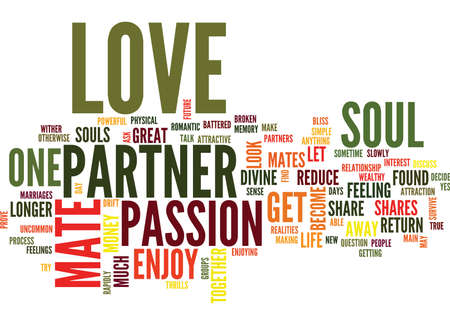 LOVE IS YOUR PARTNER YOUR SOUL MATE Text Background Word Cloud Concept Ilustração