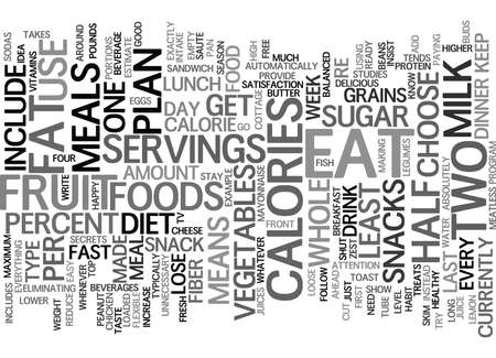 LOOSE WEIGHT FAST DIET PLAN Text Background Word Cloud Concept Illustration