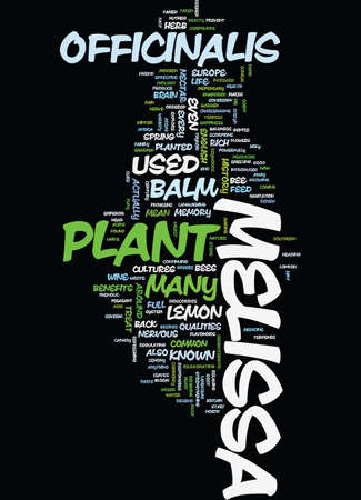 MELISSA Text Background Word Cloud Concept