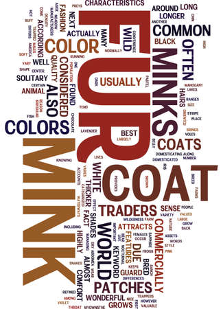 mink: MINK FUR COAT Text Background Word Cloud Concept Illustration