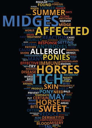 MIDGE BITE MISERY Text Background Word Cloud Concept