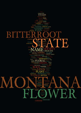 MONTANA STATE FLOWER Text Background Word Cloud Concept