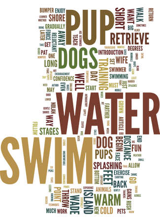 TEACH YOUR PUP TO SWIM FOR FUN AND EXERCISE Text Background Word Cloud Concept