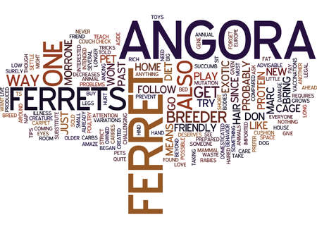 THE ANGORA FERRET Text Background Word Cloud Concept