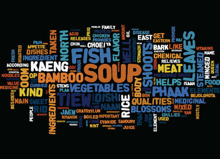 THAI DISHES NORTH EAST Text Background Word Cloud Concept